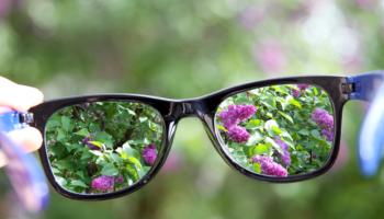 Entenda neste post o que são as lentes polarizadas, qual seu diferencial e como ela pode ajudar a desenvolver as vendas em sua ótica.